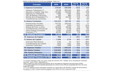 Análisis de Ejecución Presupuestaria – Enero 2020